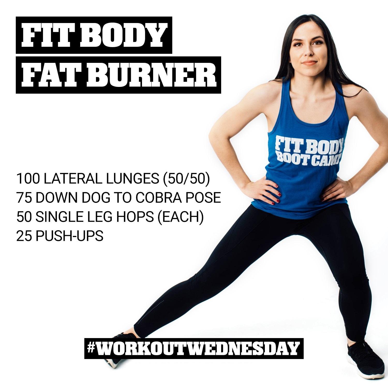 Fit Body Fat Burner